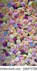 The flowers in the wall with nice color and lighting with dark and light