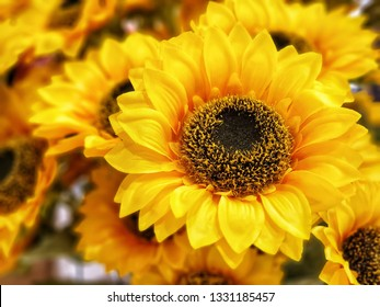 flowers wallpaper.Phoney flowers  for Interior.Artificial sunflower made by fabric and plastic use decorated