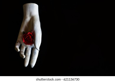 Flowers with white mannequin hand, black background.