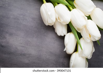 White tulip flower images stock photos vectors shutterstock flowers white tulips on the grey background mightylinksfo