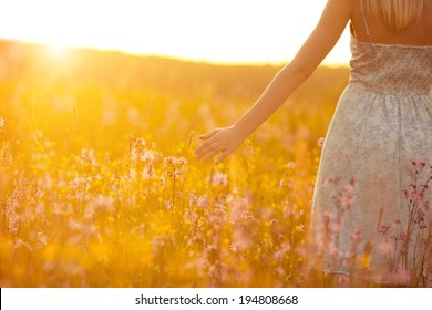 Flowers and the woman palm in the field. Lit evening sun