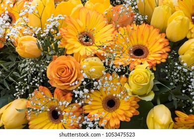 Flowers in yelllow