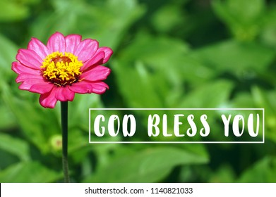 "Flowers zinnia elegant. Color nature background with a word ""God bless you"""