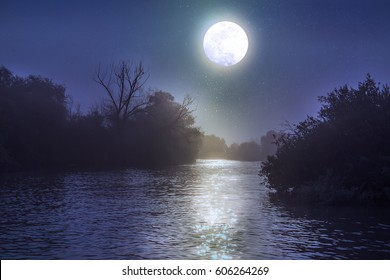 A flowing river in the Danube Delta in Romania by night with a full moon reflecting in the water