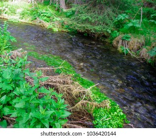 Flowing river in the summer. Beautiful landscape or background.  Majestic and breathtaking view
