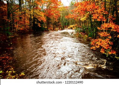 The flowing water of the Ogunquit River winds around and through the Forrest during the fall foliage season in Maine.