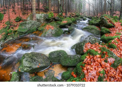 Flowing water over boulders covered with moss in the autumn forest