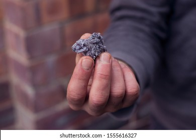 Fluff / lint on laundry after removing from clothing dryer isolated on white background. Woman & man's hand