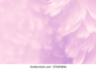 Fluffy amethyst purple feather fashion design background - soft focused photograph - Fashion Color Trends Spring Summer 2016