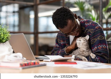 Cat Manager Images, Stock Photos & Vectors | Shutterstock