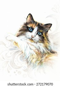 Fluffy beautiful tricolor cat with blue eyes on a pillow. Hand illustration - pencil on paper.