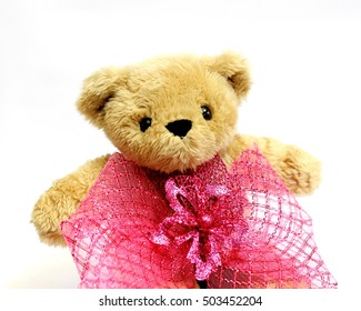fluffy  brown bear toy  with  pink bow or ribbon isolate in white background