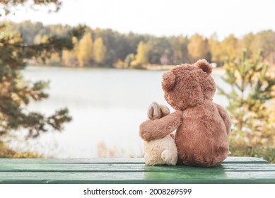 Fluffy brown teddy bear hugs small toy bunny sitting on green bench on bank of tranquil river on autumn day backside view