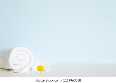 Fluffy, clean white towel roll on shelf in bathroom. Beautiful camomile or daisy. Fresh flower. Empty place for text on pastel blue wall. Spa still life.