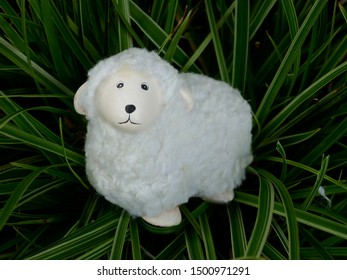 fluffy little lamb. Lonely lost cuddly toy on the way edge.