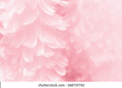 fluffy mauve pink feather fashion design background black and white tinted valentine day fuzzy textured