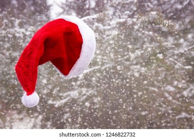 fluffy red santa hat hanging from a tree in the snow