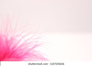 The fluffy texture of downy feathers of flamingos is yakro pink in color, soft focus. Aerial soft pink texture of bird feathers. On a light background.