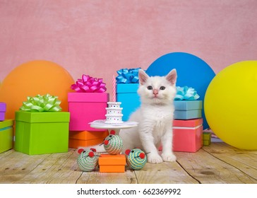 Fluffy white kitten sitting on a wood floor next to a tiny porcelain table with a tiny birthday cake with one pink candle. Bright colorful balloons and presents with bows all around, pink background.