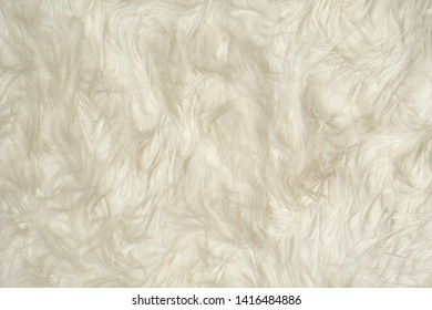 Fluffy white long fur texture background pattern.