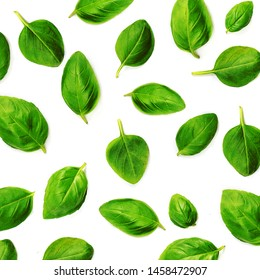 Fluing Basil herb leaves isolated on white background. Basil Pattern. Top view. Flat lay.