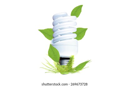Fluorescent bulb as a symbol of environmental conservation on a white background
