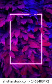 Сreative fluorescent color layout. Neon light flat square frame on leaves background in dark colors, fluorescent color palette copy space for banner, poster, card, sale advertisement, party invitation