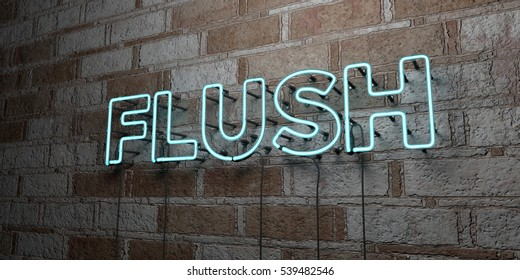 FLUSH - Glowing Neon Sign on stonework wall - 3D rendered royalty free stock illustration.  Can be used for online banner ads and direct mailers.