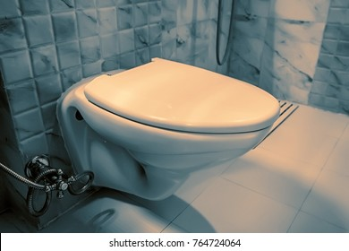 Flush toilet bowl in lavatory