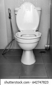 flush toilet, in the house