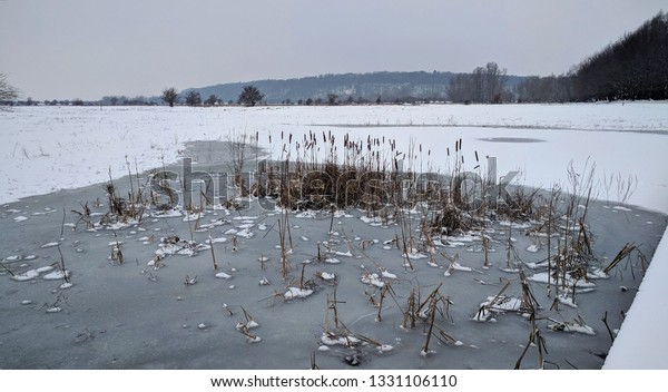 Fluvial landscape, frozen floodplains of the river Rhine, Blauwe Kamer nature reserve. Grebbeberg moraine hill in background. The Netherlands. winter 2019