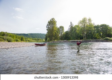 Fly fisherman casting to rising fish on the McKenzie River while fishing for native redside rainbow trout in the clear water.