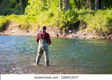Fly fisherman casting a fly rod to rising fish on the McKenzie River in Oregon while catch and release fishing for native redside rainbow trout.