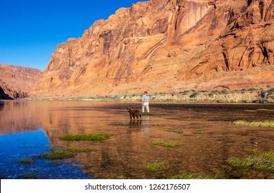 Fly fisherman & Dog wading in beautiful Colorado river beneath soaring vibrant canyon walls near Lees Ferry AZ