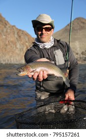 fly fisherman holding a rainbow trout in Idaho