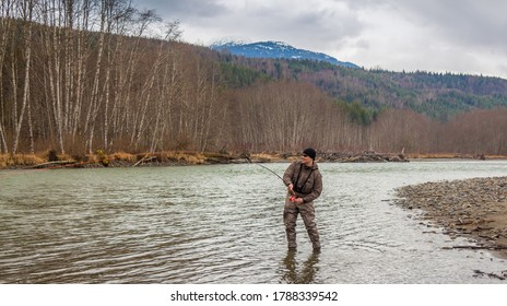 A fly fisherman hooked into a big fish in a the Kalum River, British Columbia, Canada, with the rod bent and aspen woodland on the far bank, and mountains in the background
