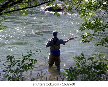 Fly fishing among the rocks and trees in a mountain stream