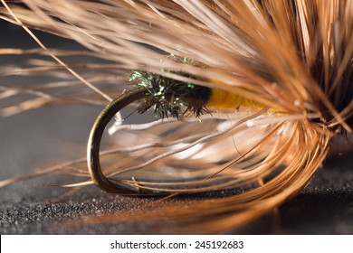 fly fishing. close-up