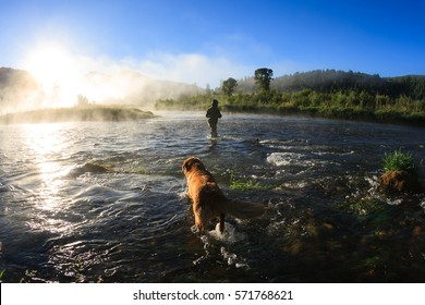 Fly Fishing At Dawn On The Snake River