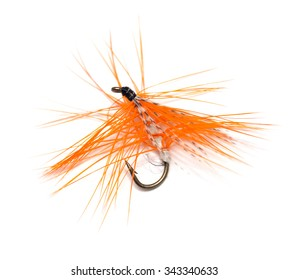 fly for fishing on white background