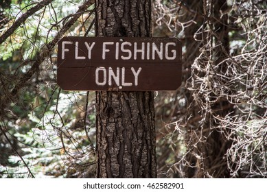 Fly Fishing Only sign in a forest