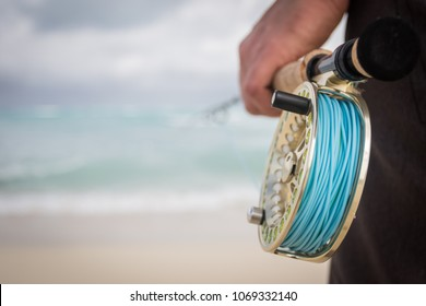 fly fishing reel on the beach