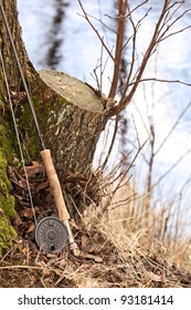 Fly fishing rod leaned on a tree