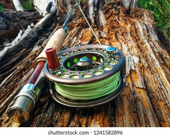 Fly fishing in the summer