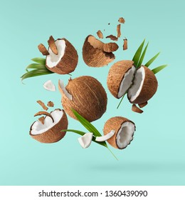 Flying in air fresh ripe whole and cracked coconut with palm leaves isolated on turquoise background. High resolution image, 3d concept