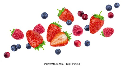 Flying berries isolated on white background with clipping path, different falling wild berry fruits mix, collection