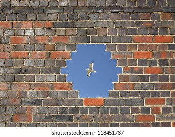 Flying bird through a hole in a brick wall background