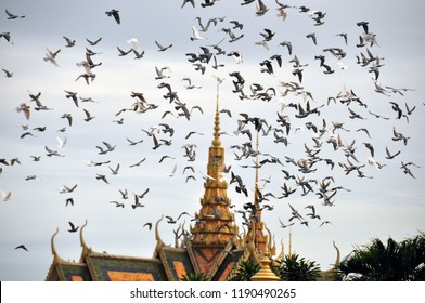 Flying birds above oriental temple, View of plenty of flying pigeons above royal palace with golden spires in Phnom Penh, Cambodia