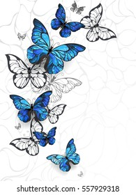Flying Blue morpho and white butterflies on light abstract background.