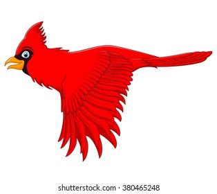 Cardinal Bird Cartoon Images, Stock Photos & Vectors ...